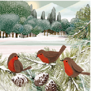 Robins and Deers Christmas Cards Wallet of 10