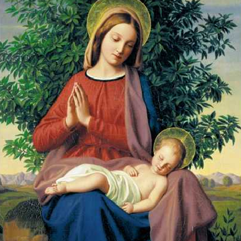 The Madonna and Child Christmas Card Pack of 5