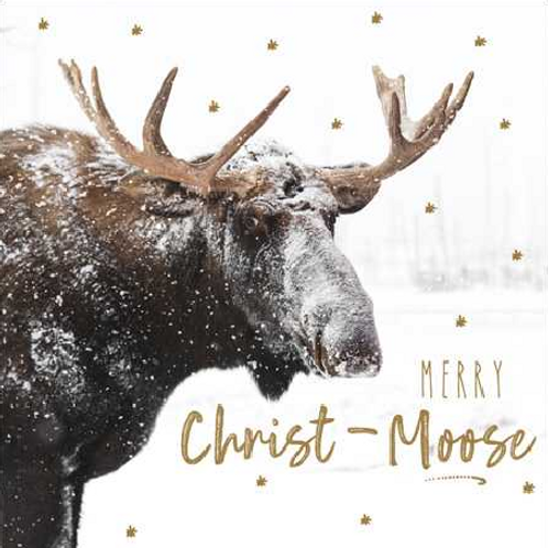 Christ-Moose Christmas Card Pack of 5