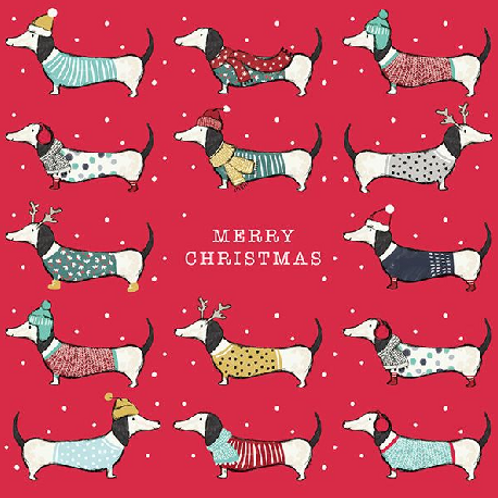 Dachshunds Christmas Card Pack of 6
