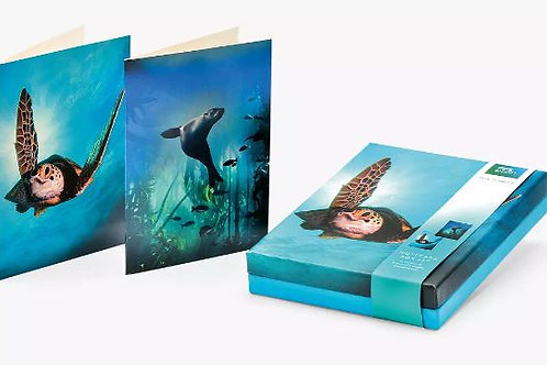 Notecard Wallet BBC Blue Planet Pack of 8