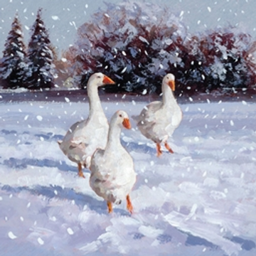 Geese Christmas Card Pack of 5