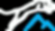 mountain lion aviation logo truckee tahoe california