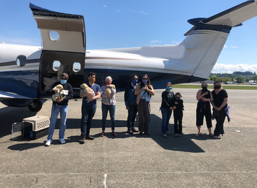 Mountain Lion Aviation Helps Deliver Service Dogs for Canine Companions For Independence
