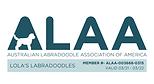 Lola's ALAA LOGO 2021.png