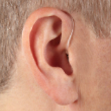 BEHIND THE EAR.png
