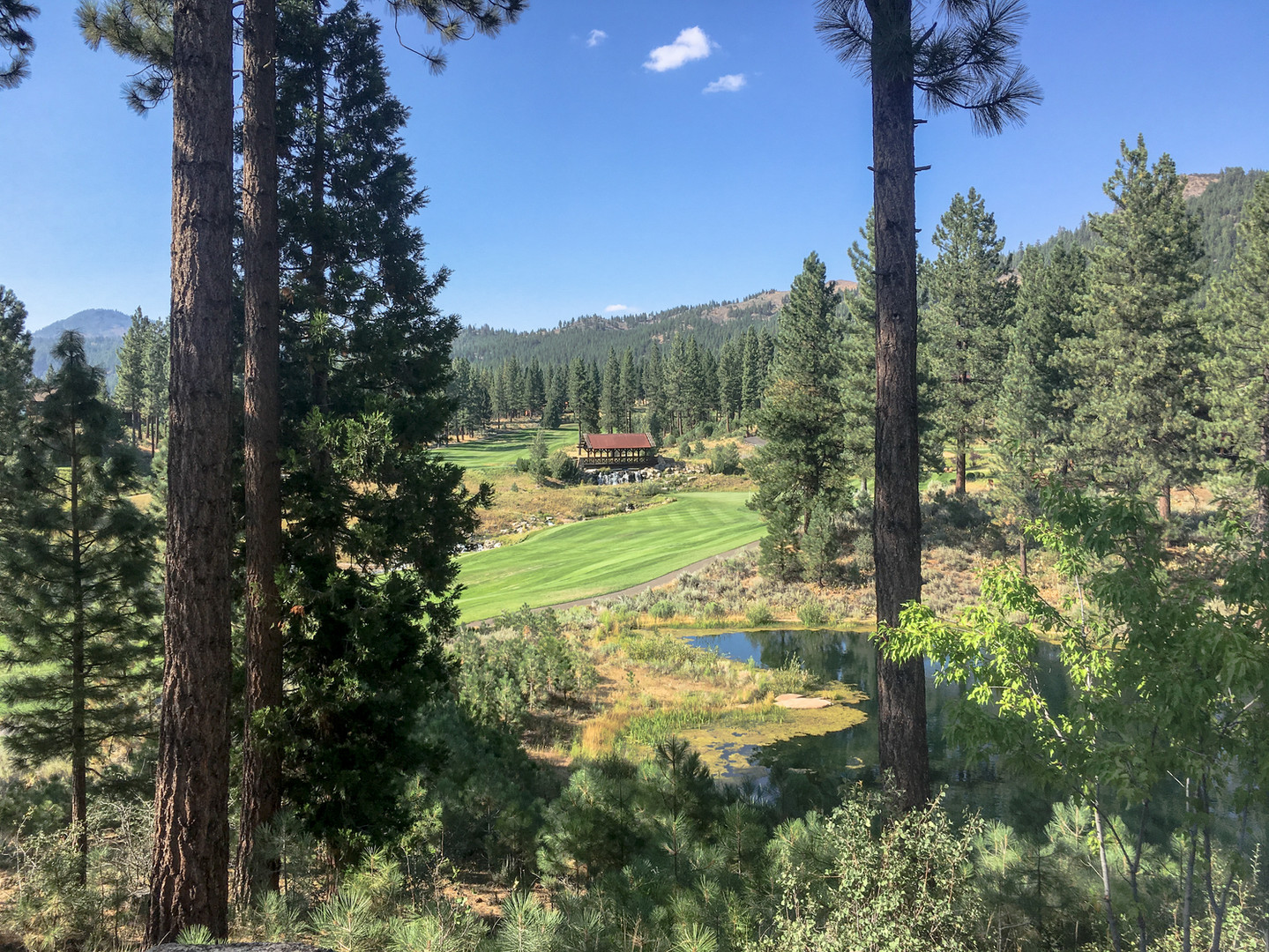 2017-08-12-16-40-20-GR2-Grizzly_Ranch_As