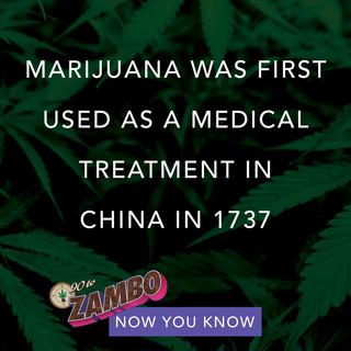 90 TO ZAMBO-weed-saying-weed-quote 38.jpeg