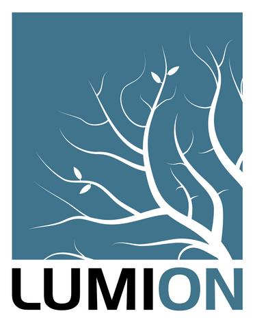 Lumion.png