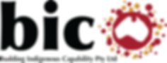 bic_logo_vector.png