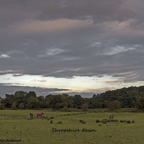 Shropshire dawn