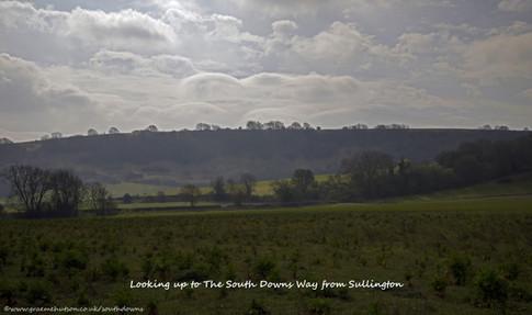 SDW above Sullington