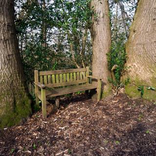 Buncton Chapel seat
