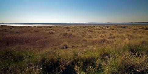 12 View over Pilsey Sand.jpg