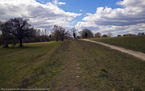 Bignor Hill view 7 150421