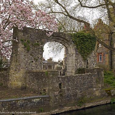Ruin & Blossom, Canterbury