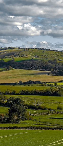 c Amberley Mount from Bury Hill.jpg