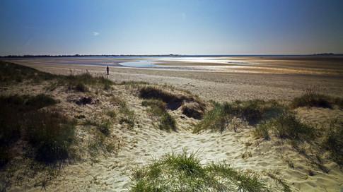 14 Pilsey Sand, Thorney Island.jpg