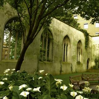 St Dunstan's lilies