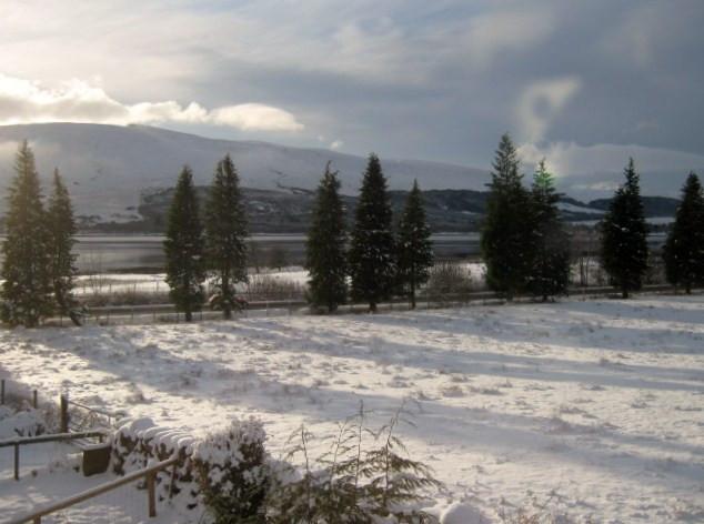 snowy001 (2).JPG