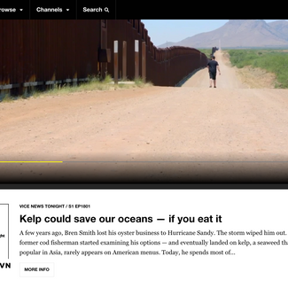 Vice News - Kelp