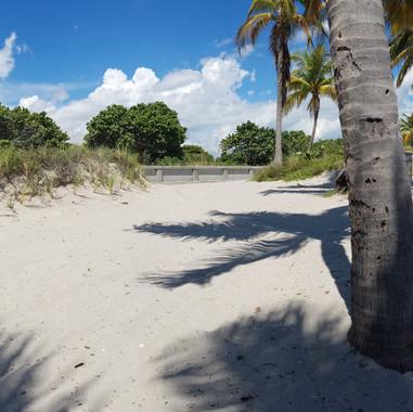 RBC/VISA - Beach Paradise