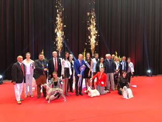 Championnat de France Canin
