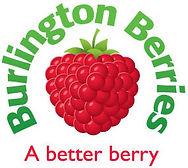 BURLINGTON BERRIES