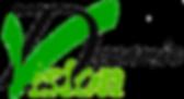 Dynamic Vision logo , Cordast, beratung, coaching, training