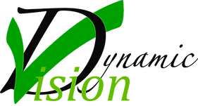 Dynamic Vision logo , Cordast, beratung, coaching, training