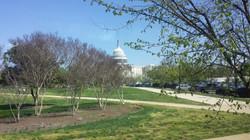 We've just arrived in DC