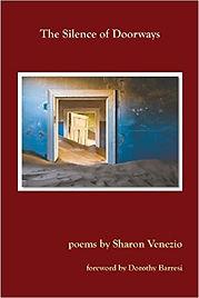 The Silence of Doorways.jpg