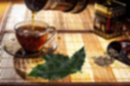 00 Holly Tea.jpg