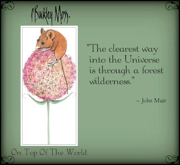the world ...