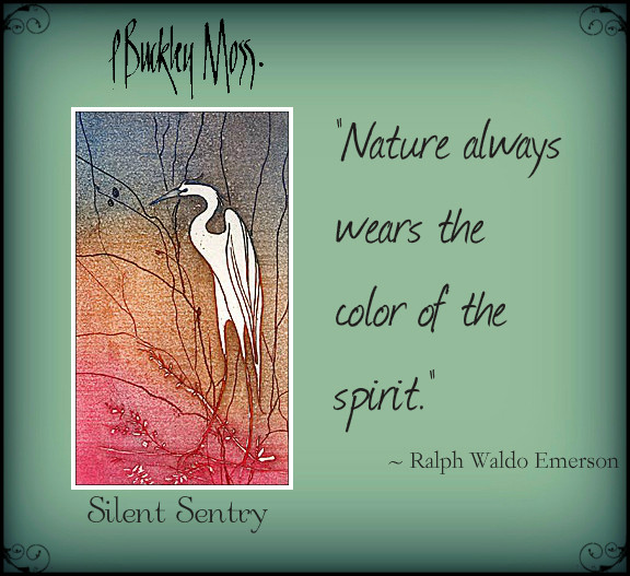 silence and color in nature ...