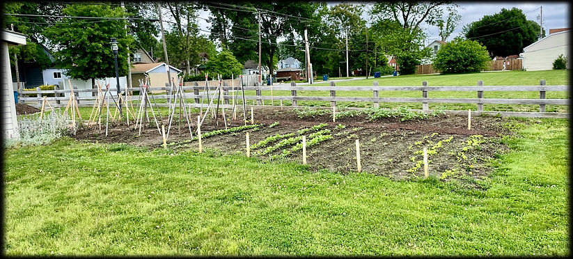 Photo taken June 2, 2021 of vegetable and herb garden at the D.D. Collins House Collinsville, Illinois