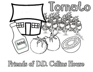 DD Tomato Coloring Page.jpg