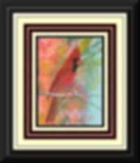 Scarlet Visitor Framed.jpg