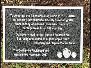 More About Our Johnny Appleseed Tree ~