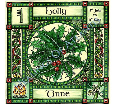 Celtic HOlly Image.jpg