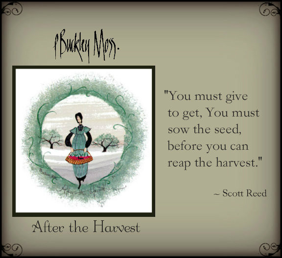 sow the seed ...