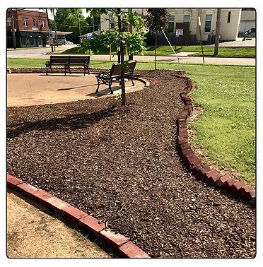 Collins Park gardens.jpg