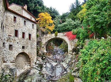 Le Celle Francescano di Cortona.jpg