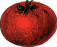 tomato-32394_1280.png