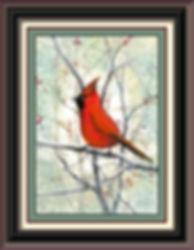 Crimson Dazzler Framed.jpg