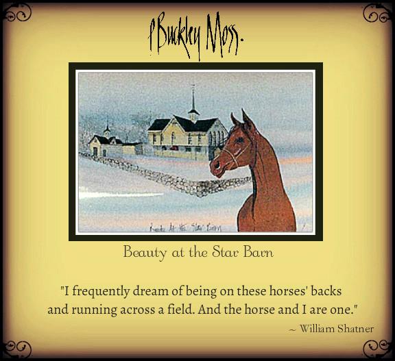 horse dreams ...
