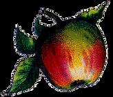 Vintage Apple image.png