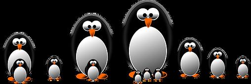 penguin-1164284_1280.png