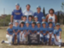 Little League baseball/ t-ball players team of future Land Surveyors