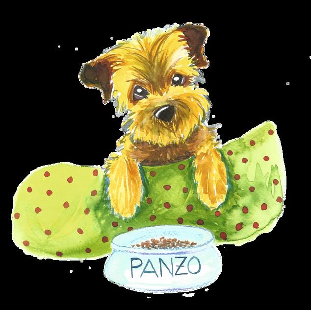 panzo.png